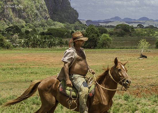 Cuba has vast fertile lands that will play an important part in their future